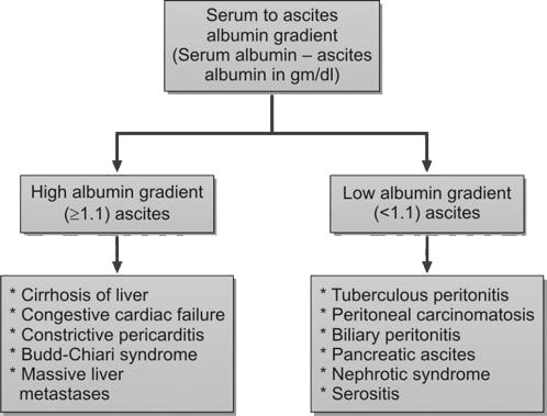 Classification of ascites into high and low albumin gradient