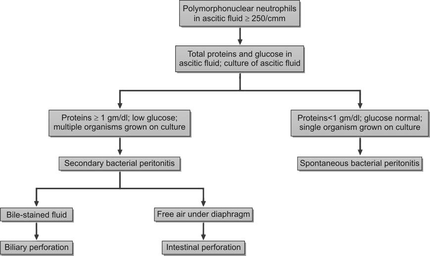 Differentiation of spontaneous from secondary bacterial peritonitis