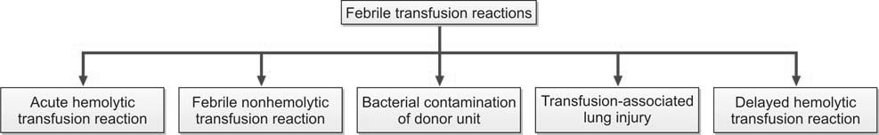 Figure 1196.2 Transfusion reactions presenting with fever