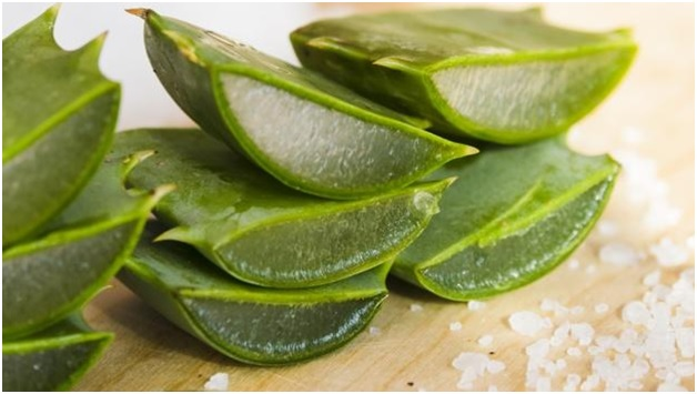 Figure 1307.2 Aloe Vera Treats Pimple And Acne Scars