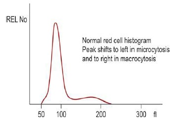Figure 808.1 Diagrammatic representation of red cell histogram obtained by aperture impedance
