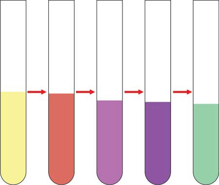 Figure 823.1 Positive Gmelins test for bilirubin showing play of colors