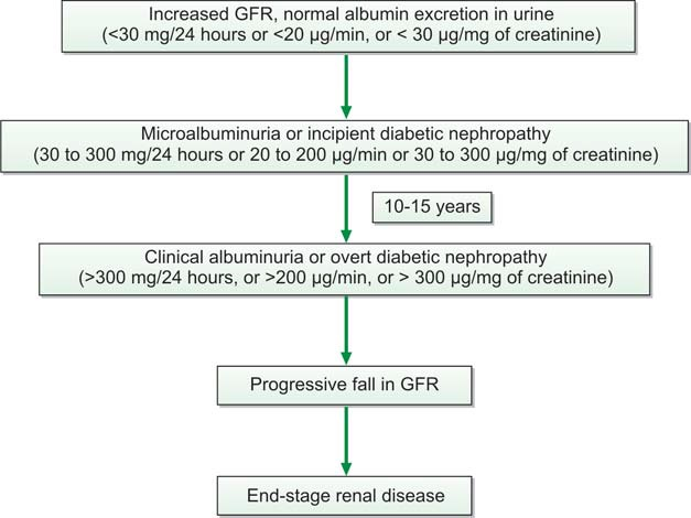 Figure 837.3 Evolution of diabetic nephropathy