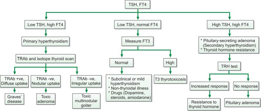 Figure 863.1 Evaluation of hyperthyroidism