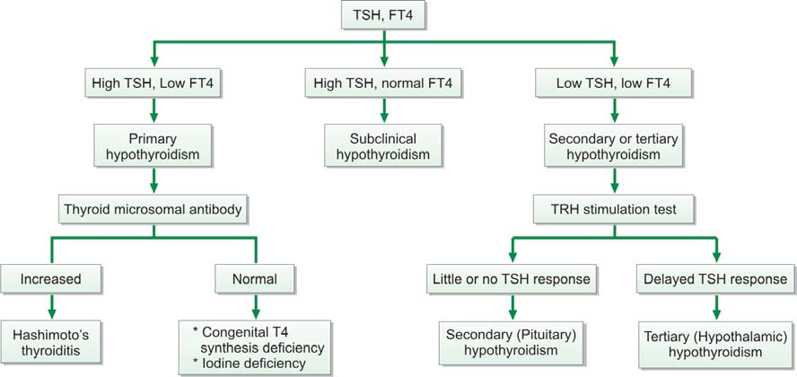 Figure 863.2 Evaluation of hypothyroidism