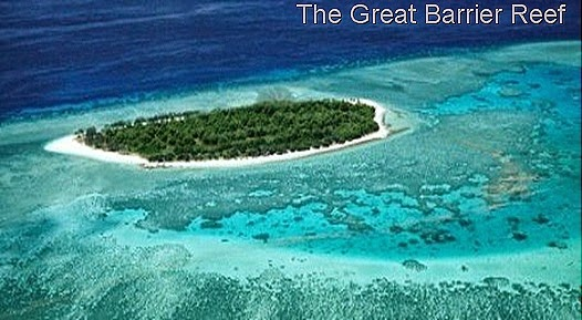 The Great Barrier Reef thumb11