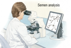 SEMEN ANALYSIS FOR INVESTIGATION OF INFERTILITY