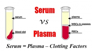 PLASMA VS. SERUM