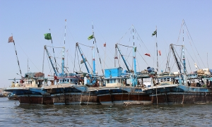 Marine Culture (Mariculture) in Pakistan
