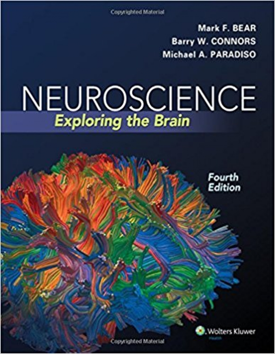neuroscience exploring the brain 4th edition bear pdf